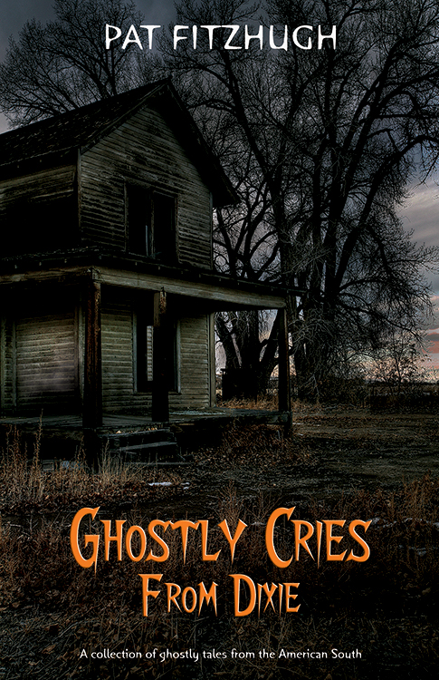 Ghostly Cries From Dixie by Pat Fitzhugh